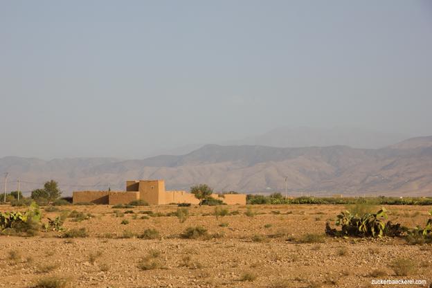 neues aus marokko2-1