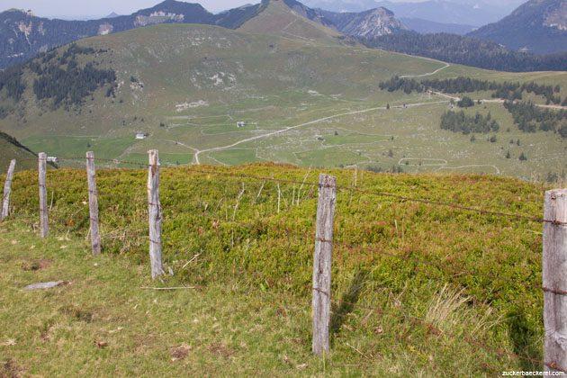 Stacheldrahtzaun, dahinter Heidelbeerstauden, dahinter weitere Berggipfel