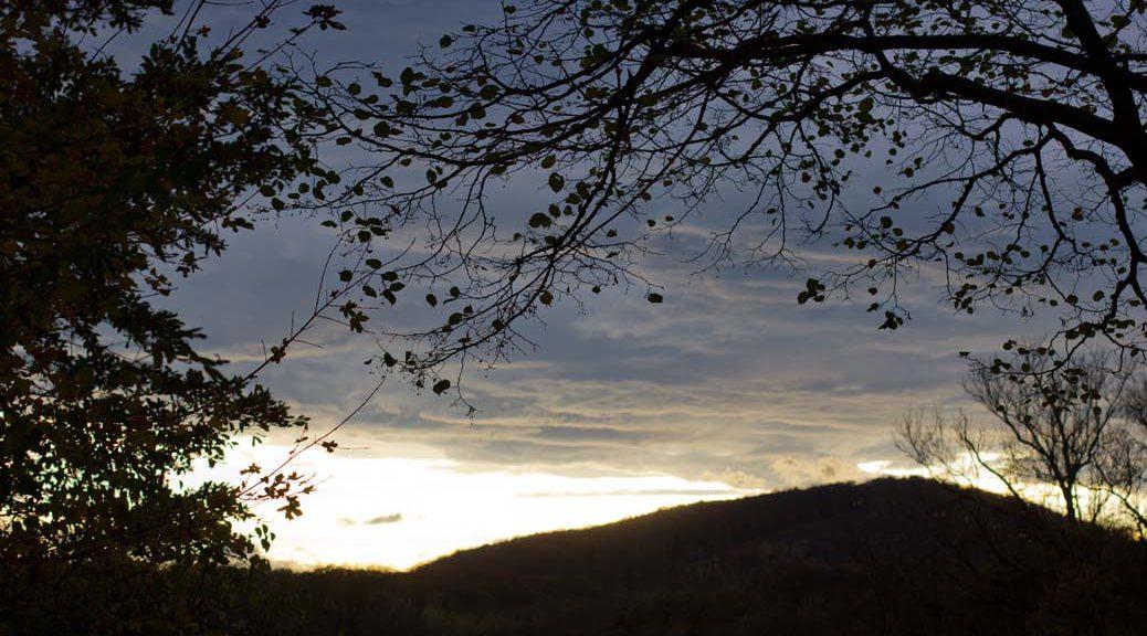 sonnenuntergang wolken und herbstlicher baum